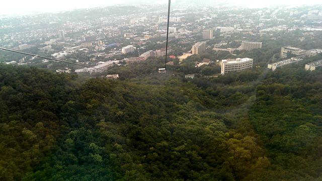Машукский лес у подножия горы Машук