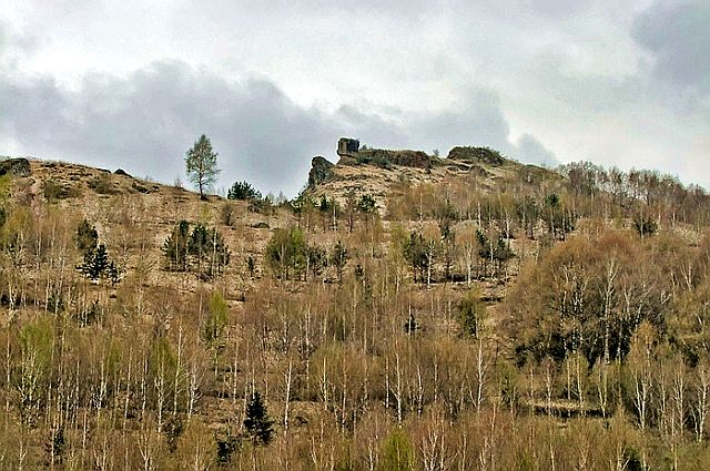 Березки в долине реки Березовки.