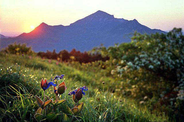 Вид на Бештау в начале лета.