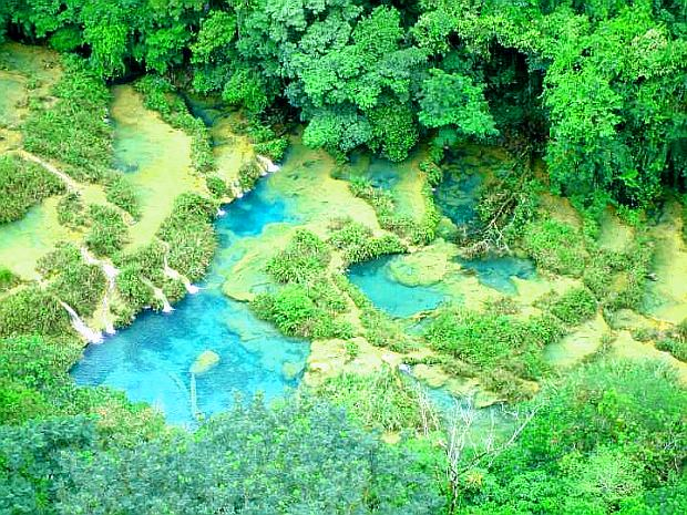 Природа, растительность и животный мир нижних Плитвицких озер