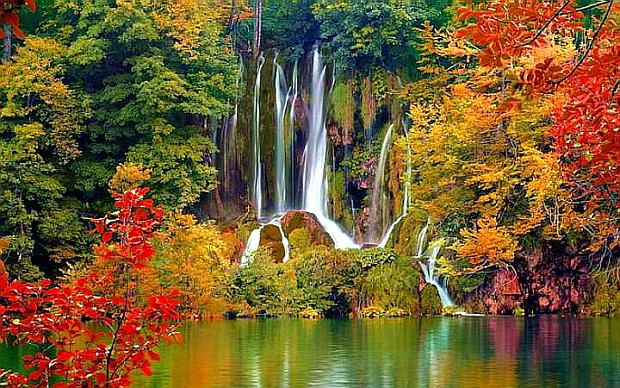 Природа, растительность и животный мир верхних Плитвицких озер
