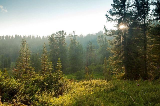 Ергаки природный парк